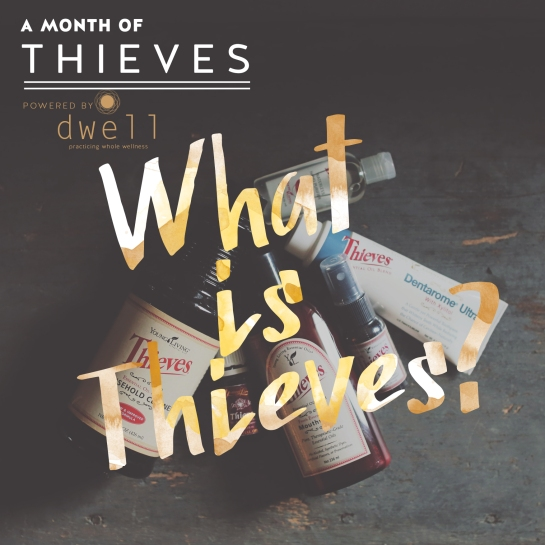 whatisthieves_001